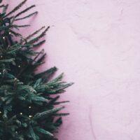 Το δίλημμα του Χριστουγεννιάτικου δέντρου