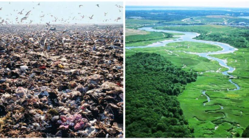 Ανακύκλωση γης : από χωματερή σε πάρκο – η ιστορία του Freshkills Park, NY